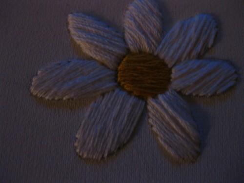 the friendliest flower 002